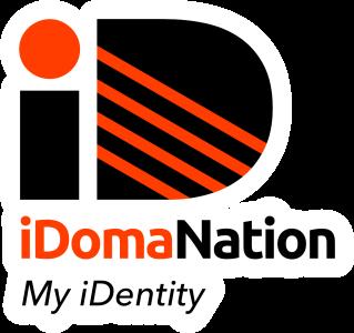 iDomaNation Logo